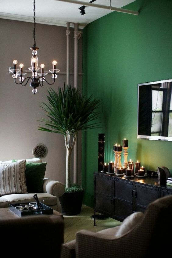 colourful interior for bright living room with green painted walls, black furniture and plants
