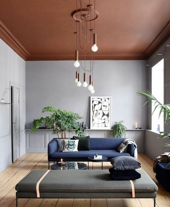 painting service for light and spacious living room with brown painted ceiling, dusty blue painted walls, blue sofa and plants